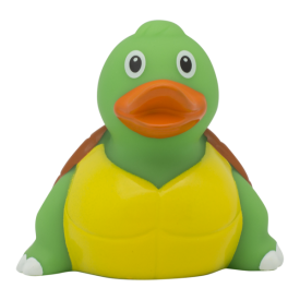 lll_turtle_duck